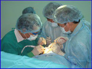 Quy trình điều trị NYU implant